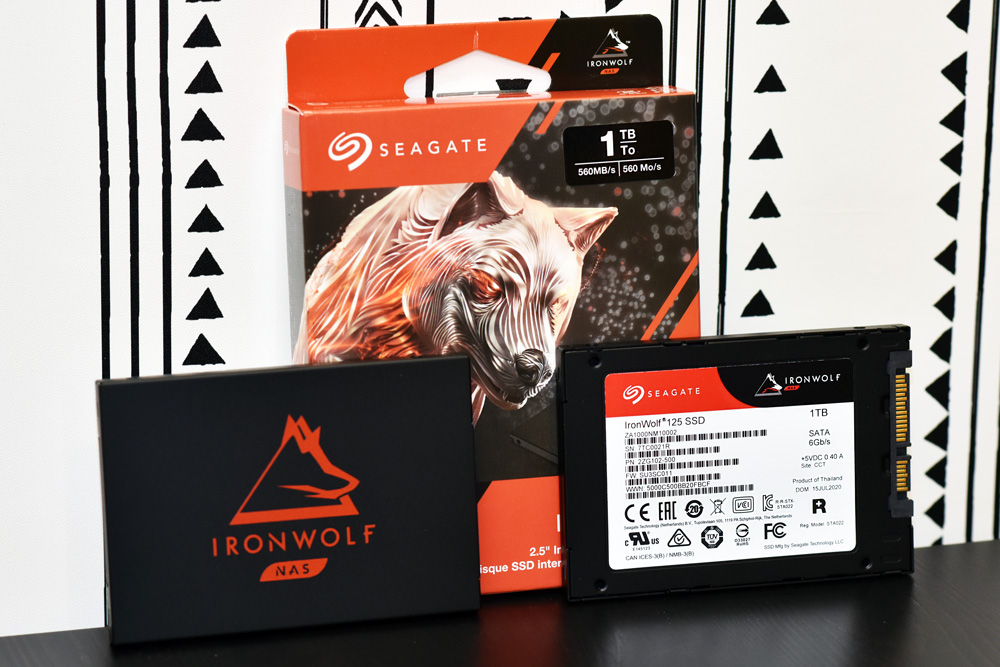 Seagate IronWolf 125 SSD (1TB) Lifestyle