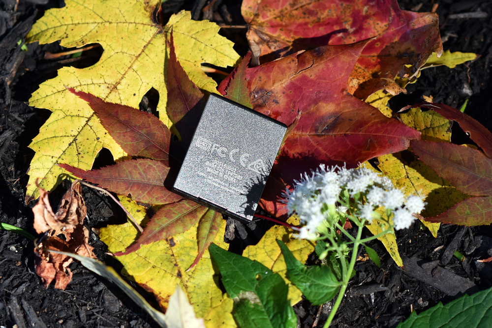 Lexar CFExpress Card back side