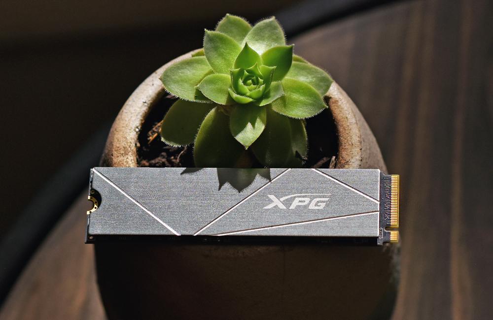 XPG gammix s50 lite front